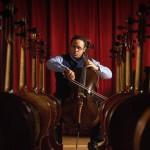 Cellos & Cello Bows Exhibit!