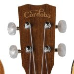 Ukulele Line Modeled On Prized Classic Instruments
