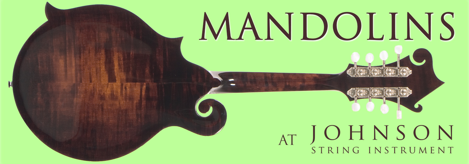 8.22.16 Mandolin Blog Header